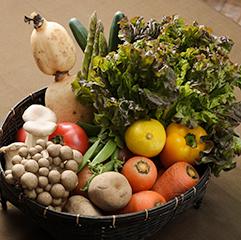 おいしさと健康を考えた、旬の新鮮野菜